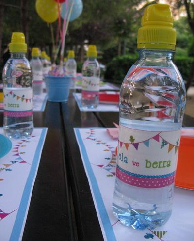 İçecek şişeleri